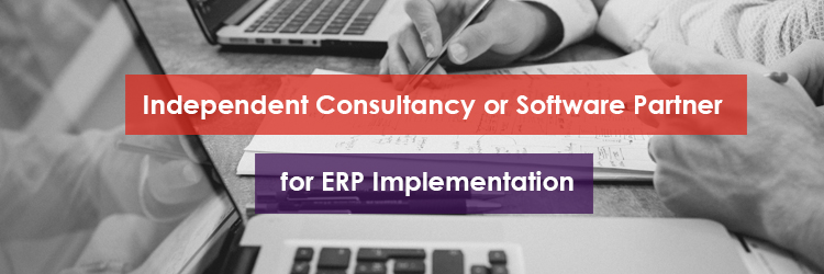 Independent Consultancy for ERP Implementation Header Image