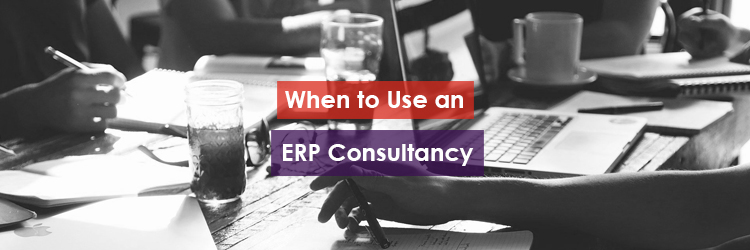 When to Use an ERP Consultancy Header Image