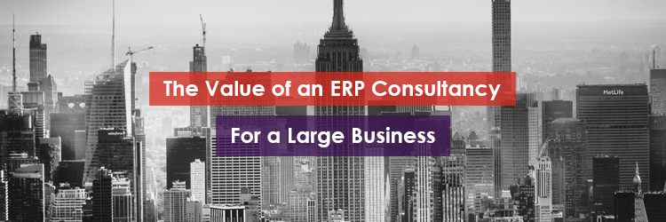 The Value of ERP Consultancy for a Large Business Header Image