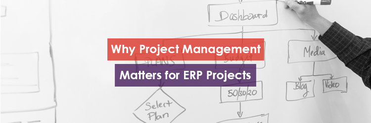 Why Project Management Matters for ERP Projects Header Image