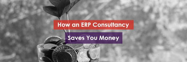 How an ERP Company Saves You Money Header Image