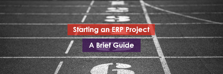 Starting an ERP Project Header Image