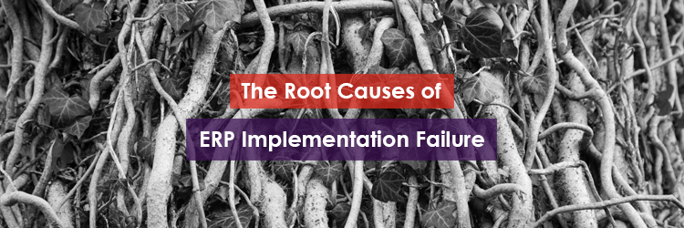 The Root Causes of ERP Implementation Failure Header Image