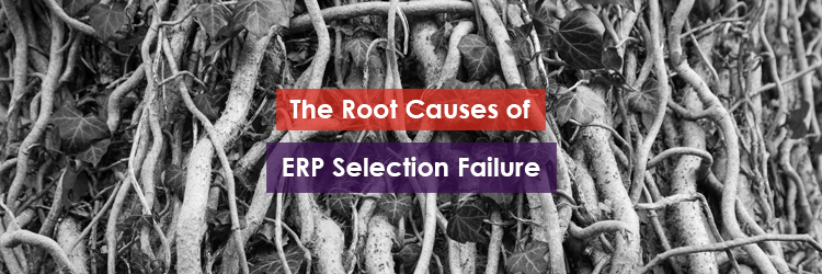 The Root Causes of ERP Selection Failure Header Image