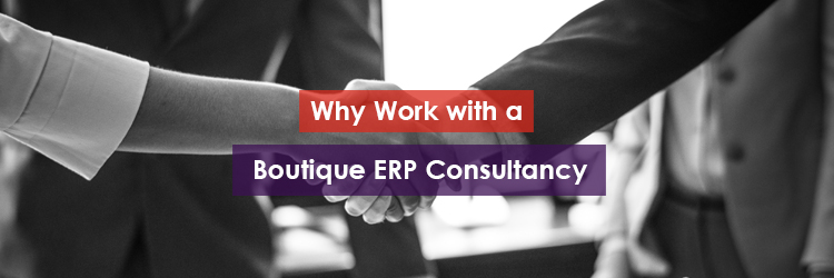 Why Work with a Boutique ERP Consultancy Header Image